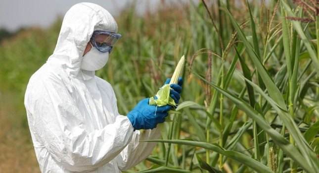 Agricultura mundial